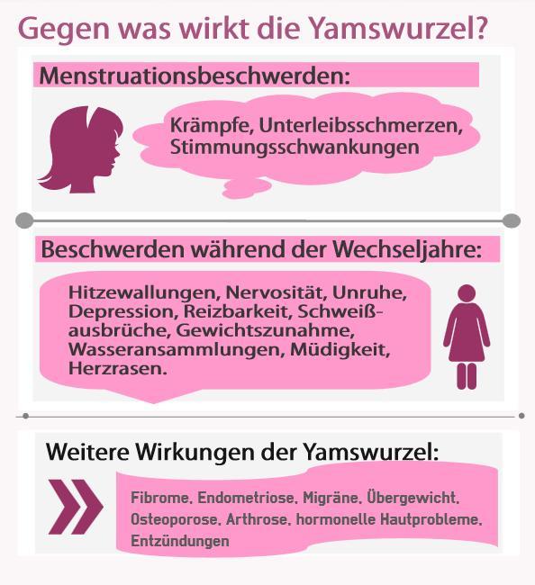 Die Wirkung der Yamswurzel in einer Infografik